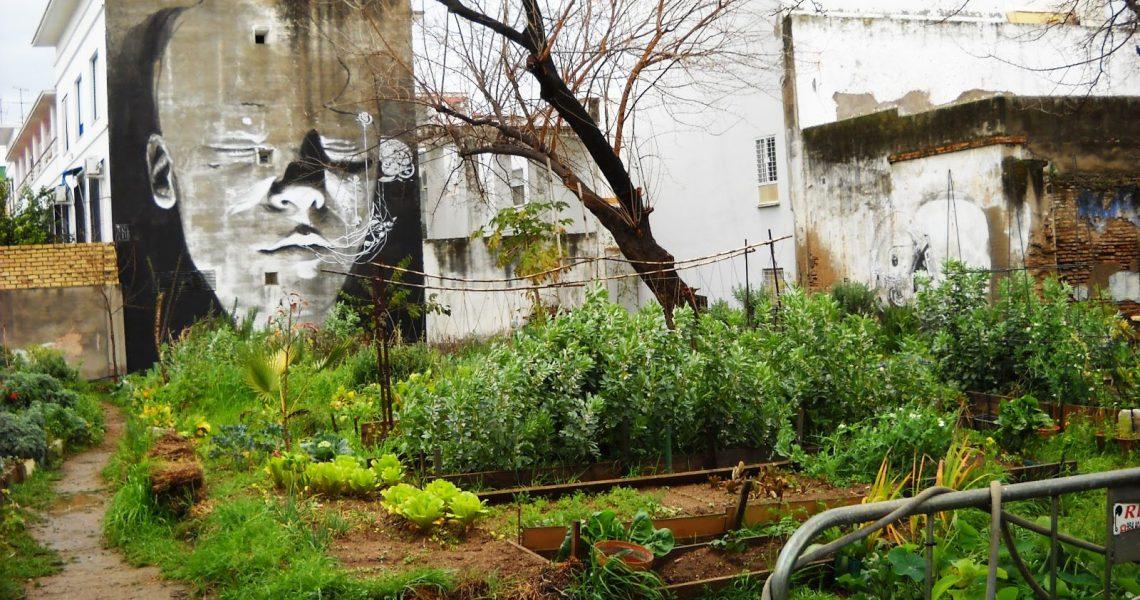 huerta-del-rey-moro