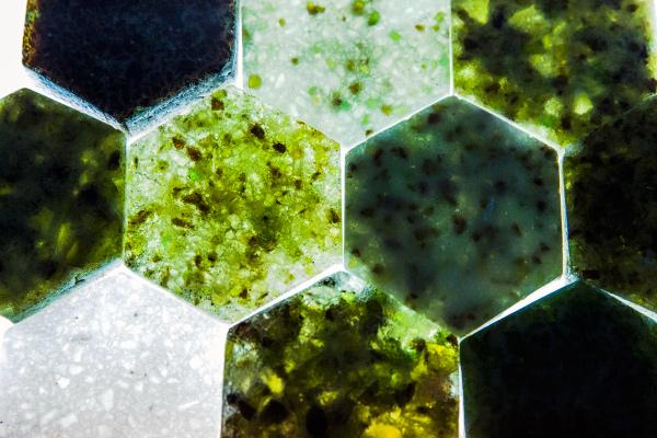 Glass-Lab-Diana-Simpson-Hernandez-2